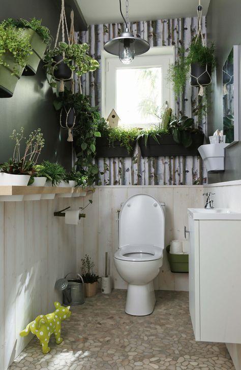 Le végétal grimpe au mur