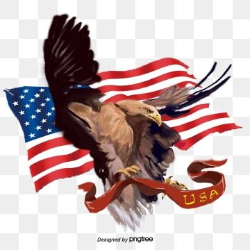 American Eagle Flying Flag Elements Ferocious National Flag National Bird Png Transparent Clipart Image And Psd File For Free Download American Eagle National Flag Graphic Design Background Templates
