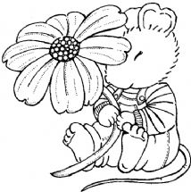 mouse flower