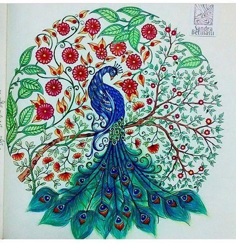 Floresta Encantada Jardim Secreto Pavao Livros De Colorir Para