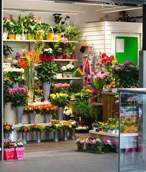 Pin By Asutosjhasla On Flower Shop Online Flower Shop