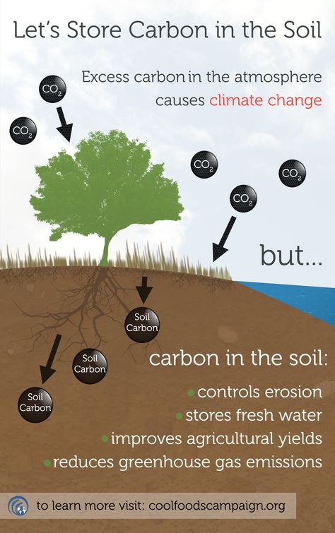 Let's focus on #climatesolutions!