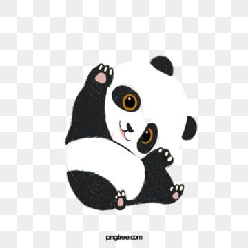 Gezeichnete Nette Pandaillustration Der Karikatur Hand Exquisite Stereoscopic Einfache Png Und Psd Datei Zum Kostenlosen Download In 2021 Panda Illustration Cartoon Clip Art Cute Clipart