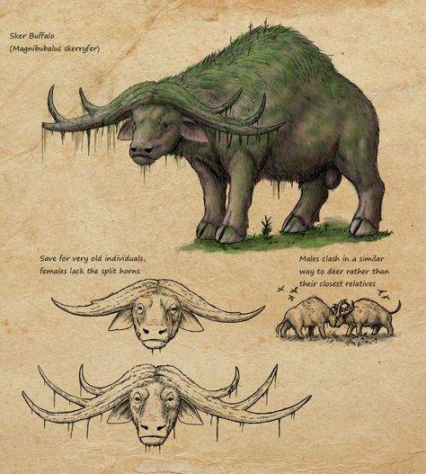 Speculative K:SI bullshit: Sker buffalo by Ramul on DeviantArt - magicas Mythical Creatures Art, Prehistoric Creatures, Mythological Creatures, Magical Creatures, Creature Concept Art, Creature Design, Creature Drawings, Animal Drawings, Fantasy Beasts