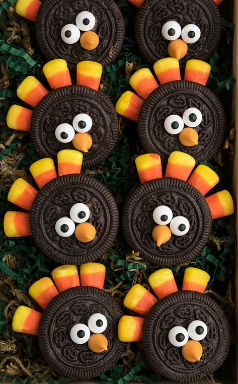 Quick and easy turkey cookies, made with simple ingredients like Oreos and candy corn. These Thanksgiving cookies are fun to make with kids. Thanksgiving Cookies, Thanksgiving Parties, Thanksgiving Turkey, Thanksgiving Food Crafts, Kids Food Crafts, Dessert Party, Halloween Snacks, Halloween Monster Kuchen, Turkey Cookies