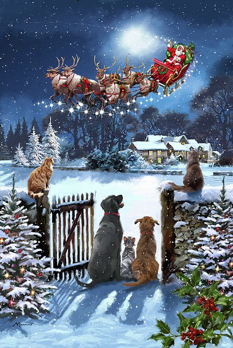 Merry Christmas Pictures, Christmas Scenery, Magical Christmas, Christmas Past, Christmas Background, Christmas Wishes, Christmas Greetings, Beautiful Christmas Pictures, Christmas Images Wallpaper