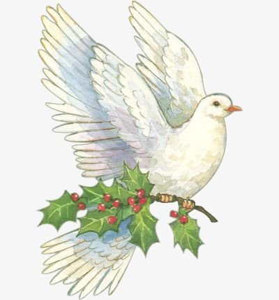 من ناحية رسم حمامة السلام حر Png و قصاصات فنية Christmas Images Free Christmas Bird Christmas Images