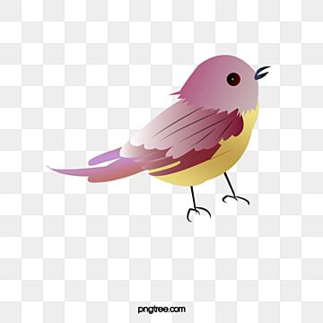Cute Little Birds Cute Clipart Lovely Birds Png Transparent Clipart Image And Psd File For Free Download In 2021 Bird Clipart Birds Clipart Cute Clipart