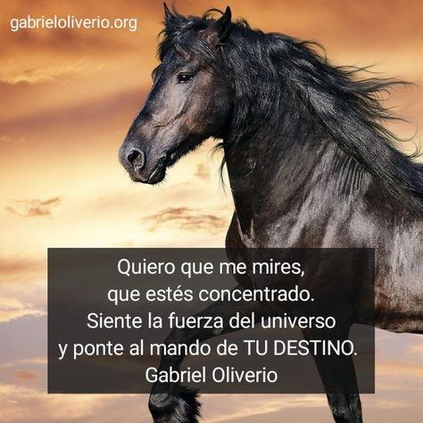 Gabriel Oliverio