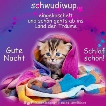 Sprüche nacht süße whatsapp gute Gute Nacht