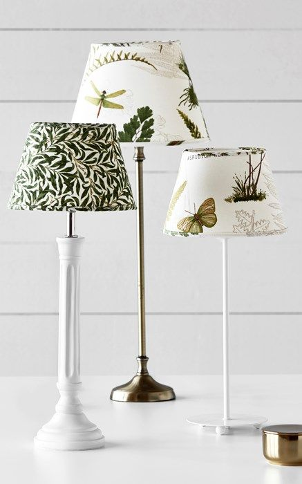 14 Best Idéer för hemmet images | Kentia palm, Small