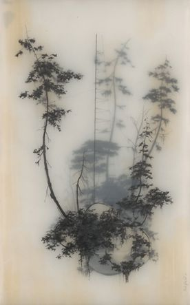 Held Up by Brooks Shane Salzwedel. Layering images and drawings with tracing paper. Encaustic Art, Art Graphique, Ink Drawings, Charcoal Drawings, Contour Drawings, Graphite Drawings, Drawing Faces, Drawing Stuff, Drawing Tips