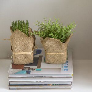 Brunelle 2 Piece Metal Pot Planter Set Reviews Birch Lane Herb Pots Potted Trees Faux Plants