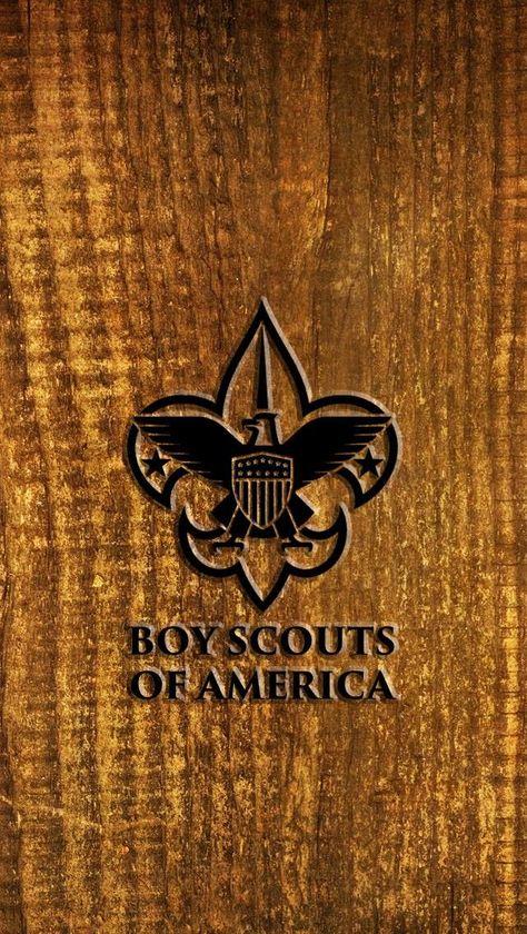 BOY SCOUT BSA Fleur De Lis Logo Novelty Polyester FLAG WALL BANNER 3/' x 5/' New