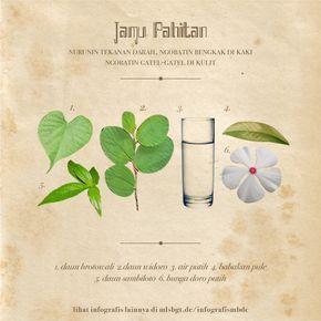 Resep Jamu Pahitan Tanaman Obat Infografis Obat Alami