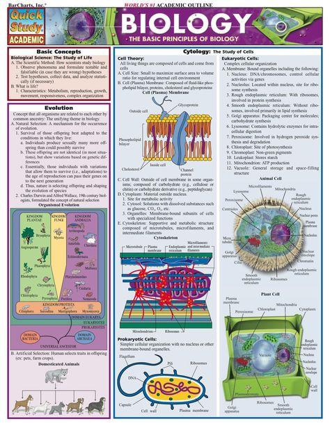 Biology 2 (eBook)