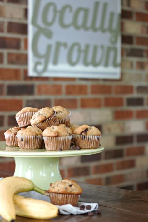 Chocolate Chip Banana Bread Muffins #baking #muffins #attemptsatdomestication