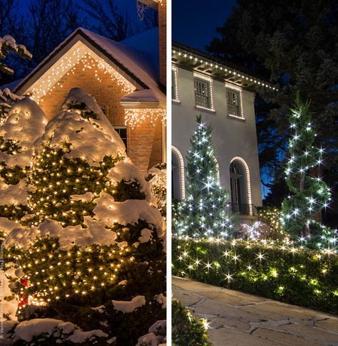 Net Lights Installation Guide Outdoor Christmas