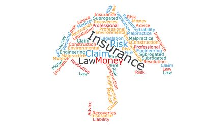 Insurance Transfers And Allocates Risks From The Person Taking The