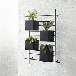 Wall Planter Hook Reviews Crate And Barrel Wall Mounted Planters Metal Wall Planters Wall Planters Outdoor