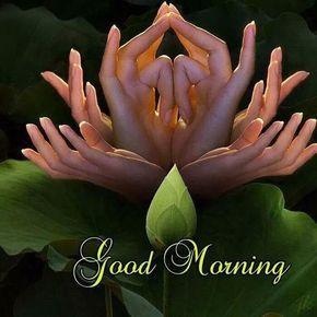 Pin Von Sarvesh Kumar Auf Fdrhgd Guten Morgen Bilder Zitate Zum Thema Morgen Guten Morgen Schone Bilder