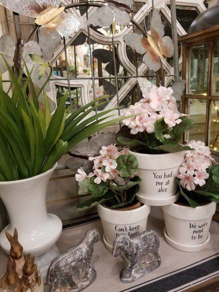 Click To Close Showroom Decor Spring Home Decor Custom Glass