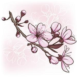 Flower Tattoo Design Pictures - #cherryblossom #Design #Flower #Pictures  #tattoo | Kirschblüten, Illustration blume, Blumenzeichnung