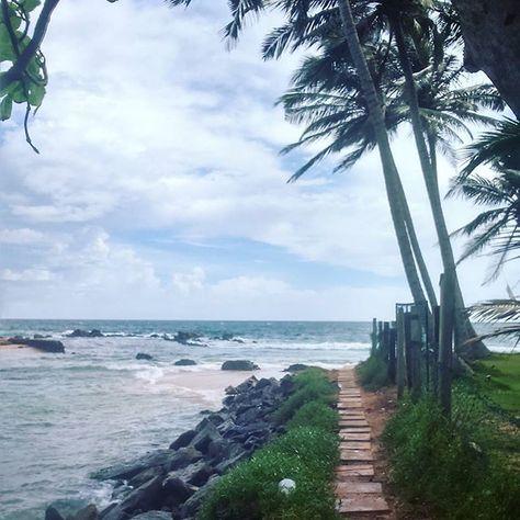 holidayseason #srilanka #mirissabeach...