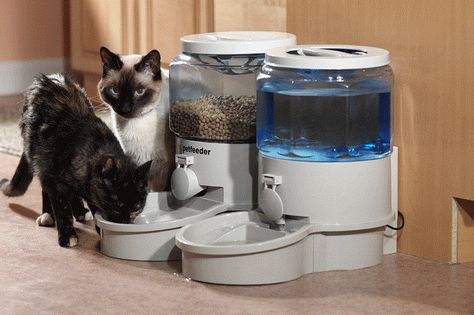 Obedient Surefeed Microchip Pet Feeder Easy And Simple To Handle Dishes, Feeders & Fountains Cat Supplies