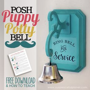 How To Potty Train A Dog To Use A Bell How To Make One Puppy Potty Training Tips Dog Potty