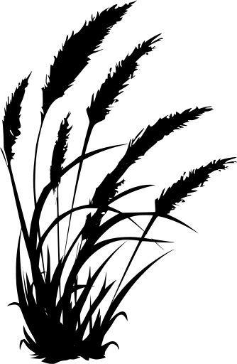 Grass Svg Free : grass, Wheat, Farming, Grass, Image, Icon., Vintage,, Silhouette,