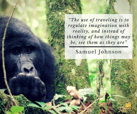 Top quotes by Samuel Johnson-https://s-media-cache-ak0.pinimg.com/474x/5d/c0/07/5dc00708c2410373820c9039dc4786e6.jpg