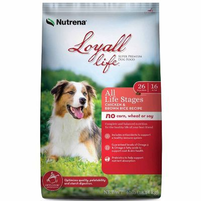 Find Nutrena Loyall Life All Life Stages Chicken Rice Dog Food