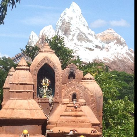 Expedition Everest @ Disney's Animal Kingdom.