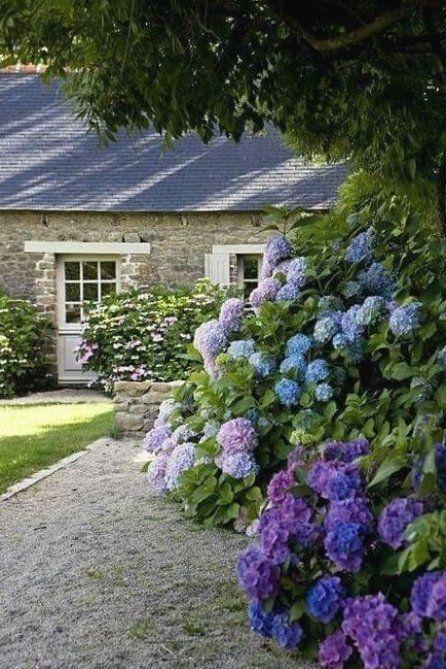 Hortensien Garten Landschaftsbau Garten Landschaftsbau Southern Garden Backyard Landscaping Cottage Garden Plants