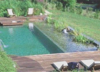 Naturbad Unterhaltskosten Okologischer Aspekt Und Sicherheit Ponds Backyard Natural Pool Natural Swimming Pools