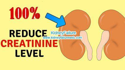 Pin On Kidney Failure Web