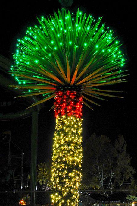 Christmas New Mexico Style. Cliff's Magical Christmas. Albuquerque ...
