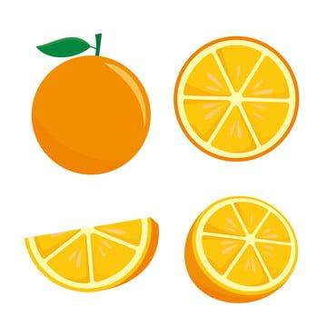 Orange Fruit Vector Illustration Isolated On White Background Orange Fruit Clip Art Fruit Orange Slice Png And Vector With Transparent Background For Free Do In 2021 Fruit Vector Orange Orange Fruit