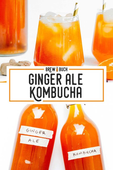 With citrusy orange juice, spicy fresh ginger, and aromatic cloves, this Gingerade copycat kombucha flavor is more than meets the eye. Best Kombucha, Kombucha Flavors, How To Brew Kombucha, Probiotic Drinks, Kombucha Fermentation, Fermentation Recipes, Homebrew Recipes, Ginger Kombucha Recipe, Kombucha Brewing