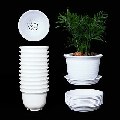 Sponsored Link 10 Set White Plastic Flower Plant Pots 6 Round Planters With Saucers For Plants Plastic Plant Pots Small Potted Plants Planting Flowers