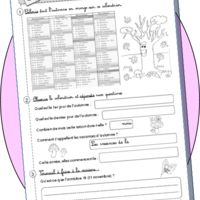 Calendrier Ce1 Exercices.Cp Les Saisons Prime Teaching French School Et French