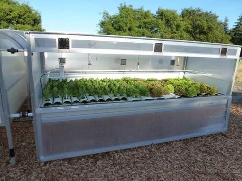 Empresa norte-americana cria conceito de 'mini-fazendas inteligentes'