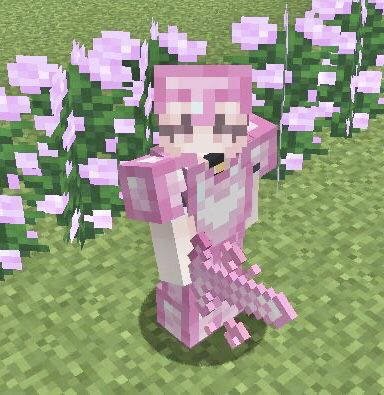 Princess Pvp Cute Pvp Texture Pack 1 16 Update Minecraft Texture Pack In 2021 Minecraft Crafts Minecraft Designs Minecraft Creations