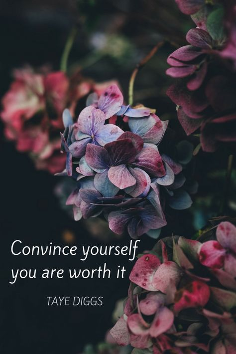"""Convince yourself you are worth it."" Powerful, moving quote about worthiness by Taye Diggs on the School of Greatness Podcast with Lewis Howes."
