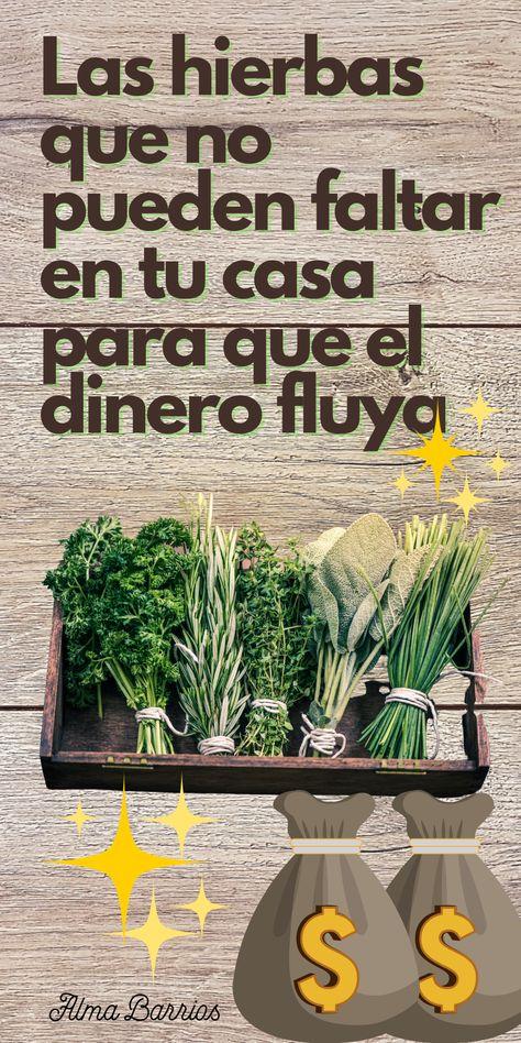Ni siquiera necesitas ser una bruja para cultivar un par de macetas de hierbas en una ventana soleada. Atraer el dinero con hierbas mágicas es muy sencillo y eficaz, ¿a qué esperas?