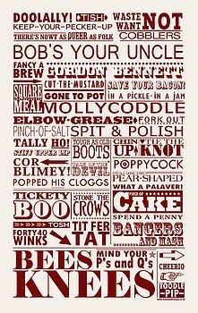 Vintage British Sayings Tea Towel.  Rohini, this is all of the sayings I was telling you about, but it's on a tea towel :)