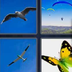 Soluciones 6 Letras 4 Fotos 1 Palabra Respuestas Actualizadas 4 Fotos 1 Palabra Fotos Parapente