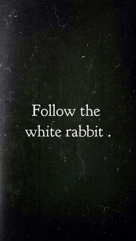 """dame-de-nuit: """"BE the white rabbit"""" Ducky only. dame-de-nuit: """"BE the whi Now Quotes, Movie Quotes, True Quotes, Words Quotes, Sayings, Alice In Wonderland Aesthetic, Alice And Wonderland Quotes, The Words, Citations Film"""