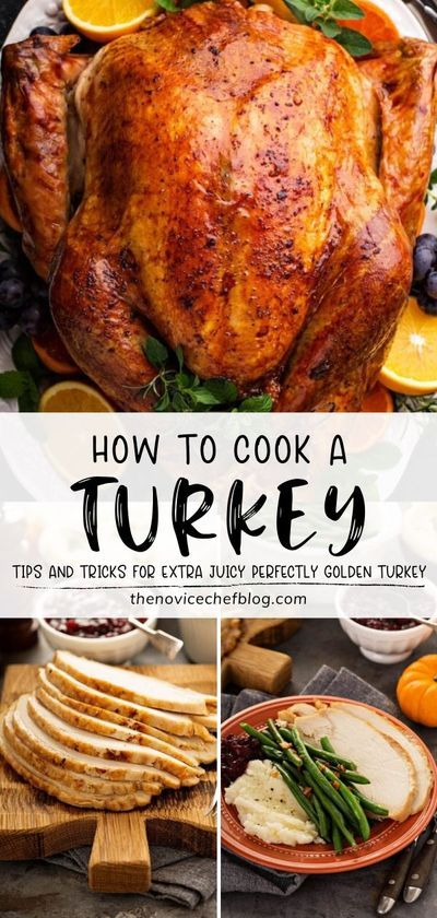 How To Cook A Turkey Thanksgiving Turkey Recipe Tips In 2020 Best Thanksgiving Recipes Thanksgiving Dinner Recipes Cooking